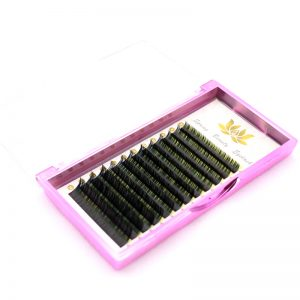 D curl lashes extension